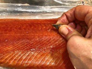 salmon_lzn